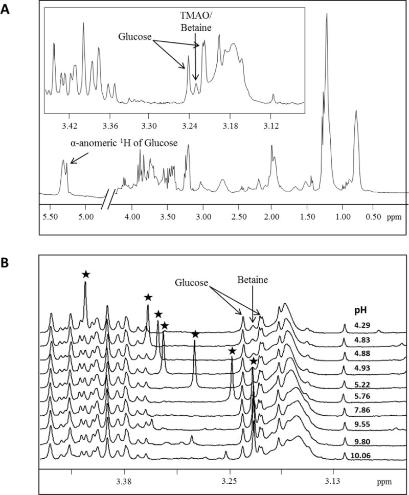 NMR quantification of trimethylamine-N-oxide in human serum and plasma in the clinical laboratory setting.